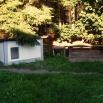 dogsyard P1570862