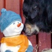 Simus and snowman P1620574