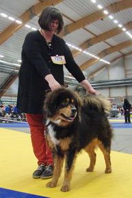 Humla got reserve CAC at Sundsvall 2016 04 10