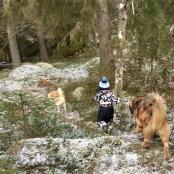 Edwin och hans hundar 15781642_10153955144031076_3798861184360382388_n