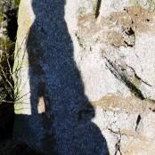 shadow P1430220