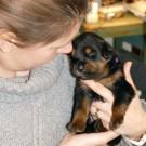 Ohlin meeting Khawa litter P1580258