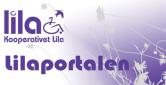 Logga in i Lilaportalen, den digitala personalhandboken.
