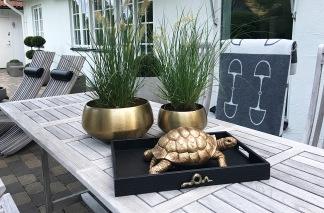 Dekoration Sköldpadda - Sköldpadda Dekoration