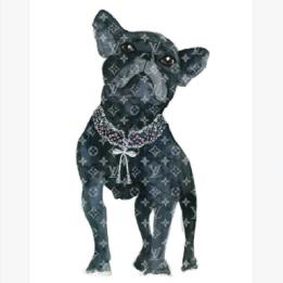 Mercedes Lopez Charro - Frenchie Fashion Dog