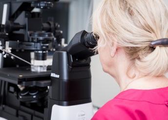 IVF behandling - assisterad befruktning  på GynHälsan Fertilitetsklinik