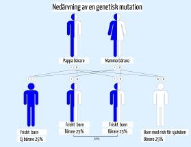 Genetisk IVF test och analys