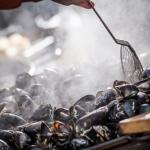 STENUNGSBADEN 3   20150422_musselsmakning_IMG_8151