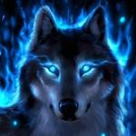 FREJA WOLF