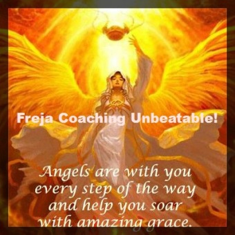 Basic Coaching with Freja -