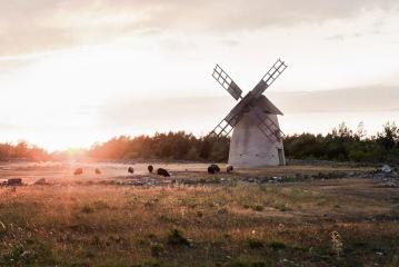Hälsoretreat på temat Stress - Lotta Bergqvist Ayurveda på Gotland