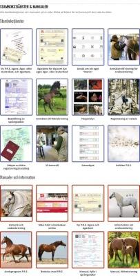 Stambokstjänster och manualer på en sida