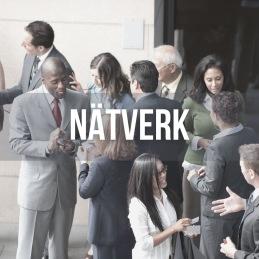 I nätverket finns stiftelser, företag, projekt och investerare. Med ett starkt nätverk växer möjligheterna
