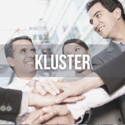 I Match >More träffas vi även i tematiska kluster för att dela intresse för temat.