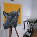 Matilda Skoglund - Dog Frenchie