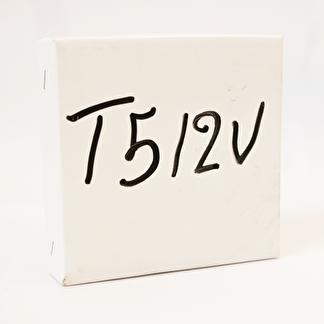T5 12V 100st/fp