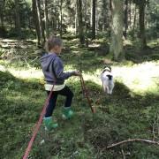 Barn/Ungdom med hund kurs