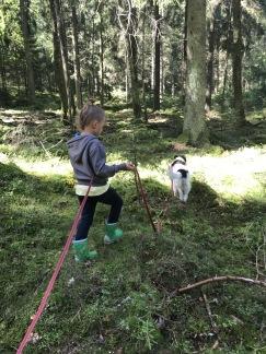 Barn/Ungdom med hund kurs -