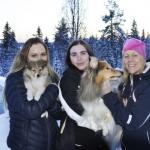 """Lapplandia's Vulpix –Nea Familjen Drugge/Nordström i Töre har nu utökats med en till """"lapplandiare"""" och Tindra – Lapplandia's Loreen On Top har blivit storasyster åt Nea. Stort lycka till!"""
