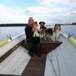 Lapplandia's Loreen-On-Top Tindra och hennes syster Lapplandia's Vulpix Nea