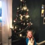 Lapplandia's Truly Loyal Ron och Anja firar jul för första året tillsammans.