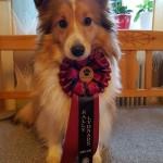 Tessa 2 år med sin nya RLD titel