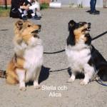 Stella och mamma Alice
