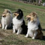 Alice med sina fina flickor, Mira och Stella
