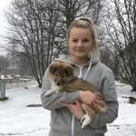 """Lapplandia's Lucky Coin """"Tova""""  flyttar till Kalix till Olivia Bergström."""