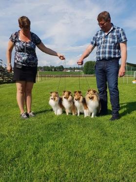 Lapplandia's kennels första uppfödaregrupp blev 3:a med Hp