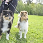 Trix och Stella