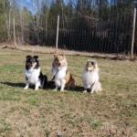 Alice med 2 av sina flickorStella och Mira