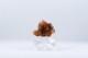 Aragonit kluster | trumlade spets stav kristaller slipade stenar healing stenar chakra stenar - Pris: ca 95kr, Gram: ca 35g