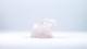 Rosenkvarts elefant | trumlade spets stav kristaller slipade stenar healing stenar chakra stenar