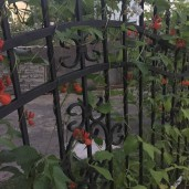 staket (2)