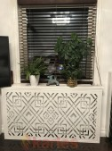 radiator skärm_ 0240