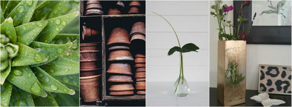 Inspirationskväll för ett hållbart hem & trädgård