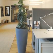 Miljöförvaltningen Helsingborg_Målad kruka_Överblick kontor