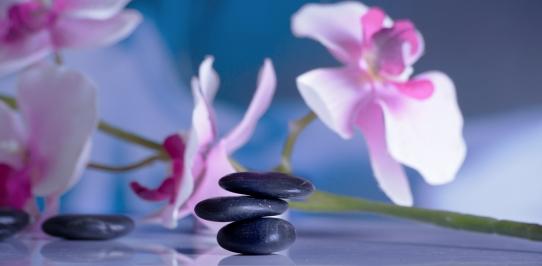 Sensuell massage Södermalm och Vasastan
