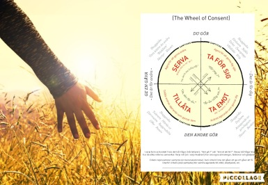 Samtyckeshjulet The Wheel of Consent Sofia Kreissl