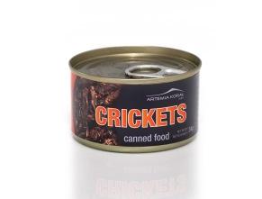 Konserverade Crickets/Syrsor 34gr