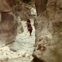 """Andre vandrere """"kastede"""" sig ud i vandstrømmen ved Jernporten."""