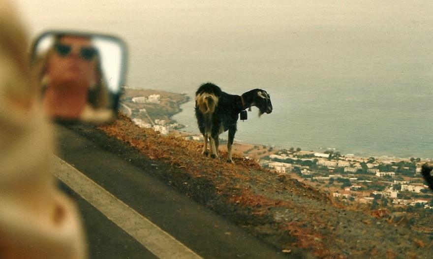 """Et fantastisk foto, synes jeg selv i dag. Jeg tog det for 30 år siden lidt oven for Mália, og da jeg i """"Mig og Kreta - 3"""" skrev """"Kreta er mit spejl"""" var det måske inspireret af dette billede."""