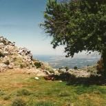 Udsigt mod øst – på en klar dag kan man nok se til Rethymnon.