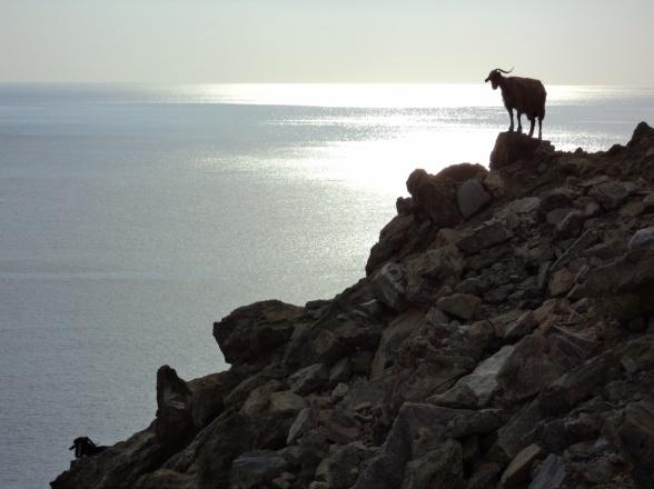 Af en eller anden grund endte vi i disse år gerne på det vestlige Kreta. Og altid på sydkysten.