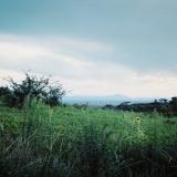 Queen Elisabeth National Park, Uganda