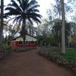 Debora farm