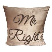 Kudde Mr right