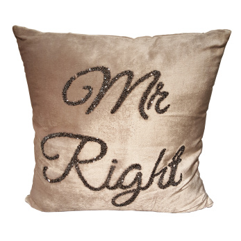 Kudde Mr right -