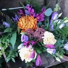 lila toner